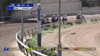Vidéo de la course PMU PREMIO JUBILOSO