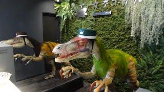 Weird Robot Hotel Henn-na Hotel