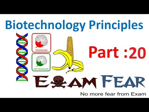 Biology Biotechnology Principles part 20 (Foreign gene product, downstream processing) class 12 XII