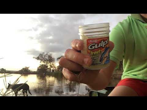 Trout Fishing Wa