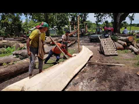 Control to Manager Teak Wood in Sawmill।Wood Cutting Tough Management।Good Quality Teak Wood Cutting