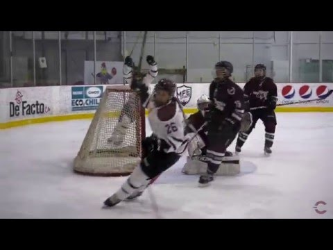 Stingers Hockey- Top 10 Goals of 2015-16