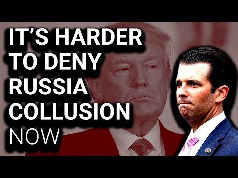 Senate Transcript Confirms Trump Jr Wanted to Collude with Russia
