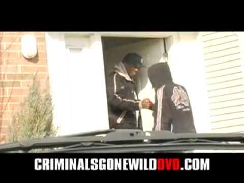 Thugs gone wild