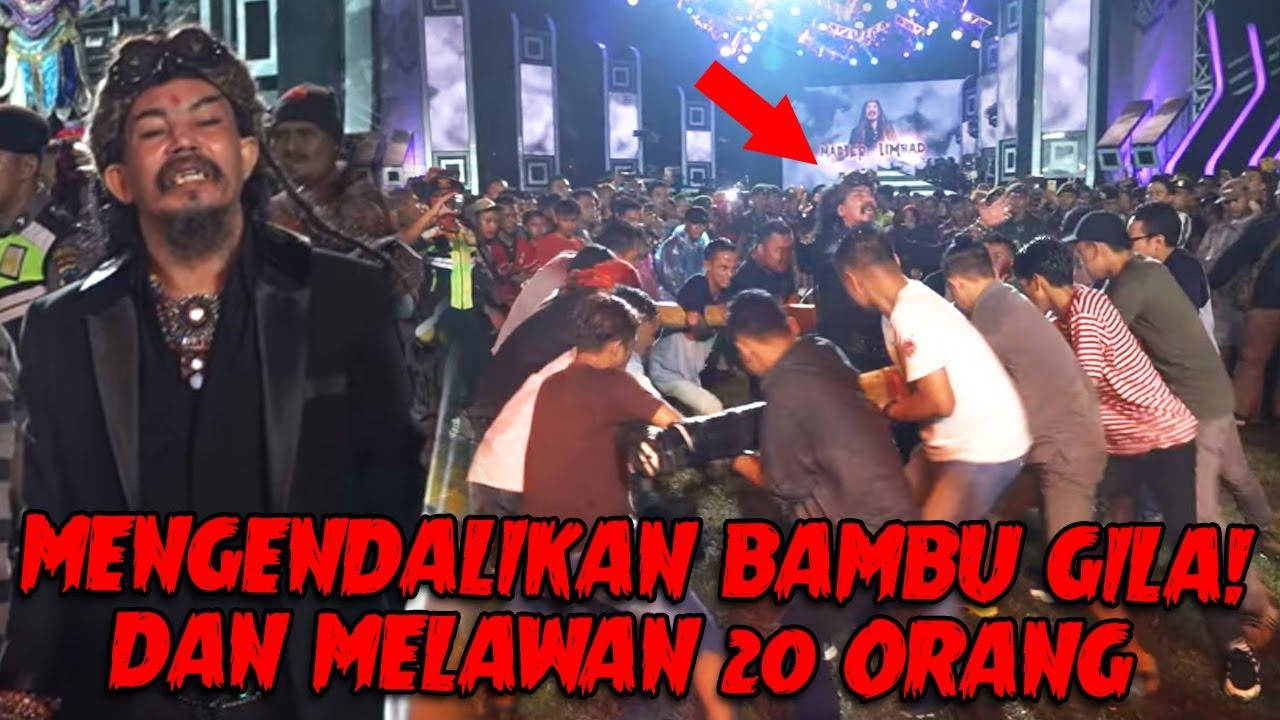PERTAMA DI INDONESIA !!! BAMBU GILA MASTER LIMBAD BENTUK KOTAK ???
