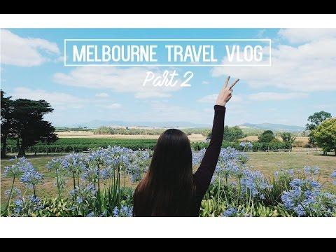 Melbourne Travel Vlog PART 2 | Puffing Billy + Yarra Valley Wineries | sueannxoxo