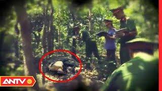 Tổng hợp những kỳ án rợn người trong rừng sâu | Hành trình phá án | ANTV