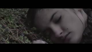 Velvet Book Trailer #1