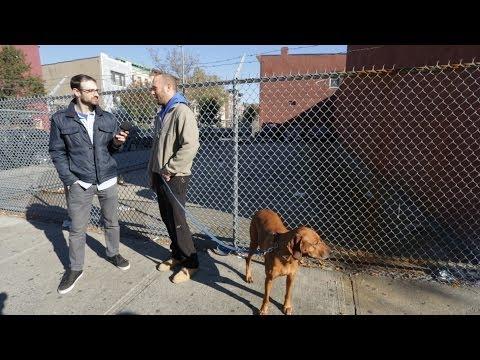 Episode 104: Crown Heights - Neighborhood Crashers