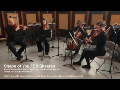 iconiQ Strings - Shape of You, Ed Sheeran