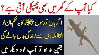 Chipkali Ko Marna Sawab Hai Ya Phr Kuch Aur Haqeeqat | Islam Advisor