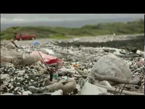 Mikroplastik ein Fluch für unsere Gesundheit und unsere Umwelt
