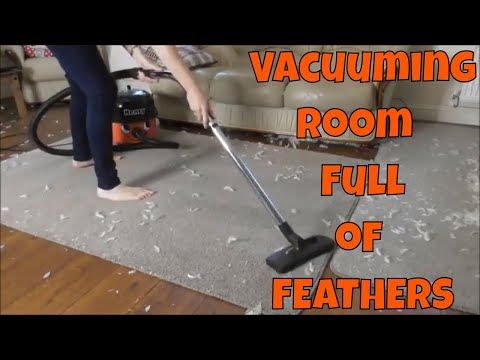 Henry and Hetty Hoovers VACUUMING ROOM FULL OF FEATHERS ~ Relaxation Vacuuming Video Better Sleep