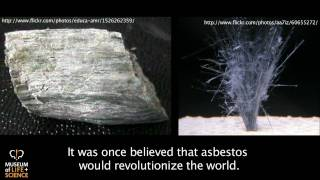 Are Carbon Nanotubes the Next Asbestos?