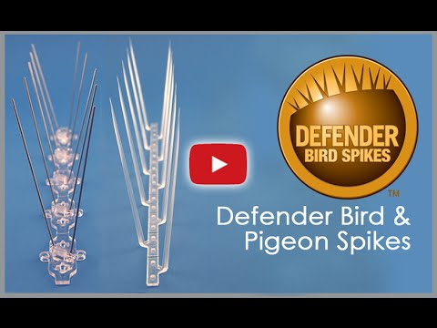 How to Install Defender Bird Spikes & Pigeon Spikes - Installation Guide