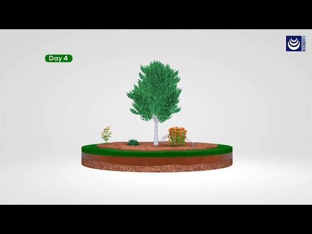 SKYdrop® · El riego inteligente en su jardín