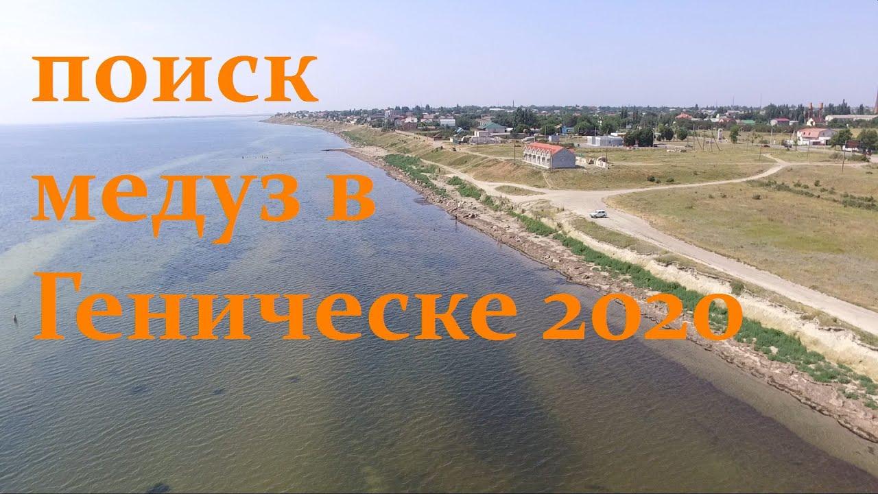 Медузы в Геническе летом 2020 ? Поиск с дрона !