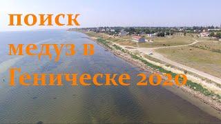 Медузы в Геническе летом 2020 Поиск с дрона