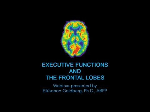 Video Course 1: Executive Functions and the Frontal Lobes (Preview)