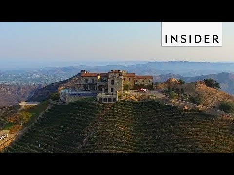 Vineyard on a Mountain