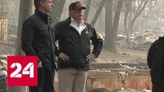 Трамп приехал в Калифорнию, чтобы остановить огненного монстра - Россия 24