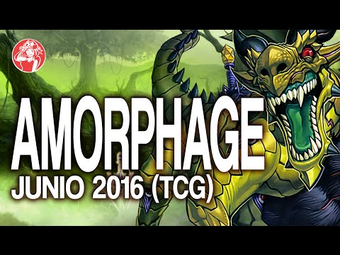 Amorphage Deck (June/Junio 2016) [Duels & Decklist] (Yu-Gi-Oh) Post SHVI (Shining Victories)