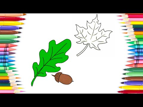 How to Draw Leafs , Nature Colouring Book for Kids | Learning Coloring Pages with Colored Markers