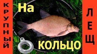 ЛЕЩ на КОЛЬЦО с лодки. Процесс рыбалки.(При высокой плотности рыбы в вашей реке количество пойманной леща на