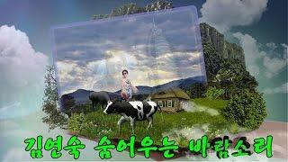 김연숙 / 숨어우는 바람소리(가사첨부) K-POP