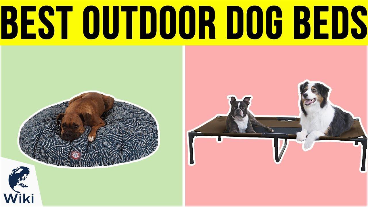 Top 10 Outdoor Dog Beds Of 2019 Video