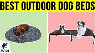 10 Best Outdoor Dog Beds 2019
