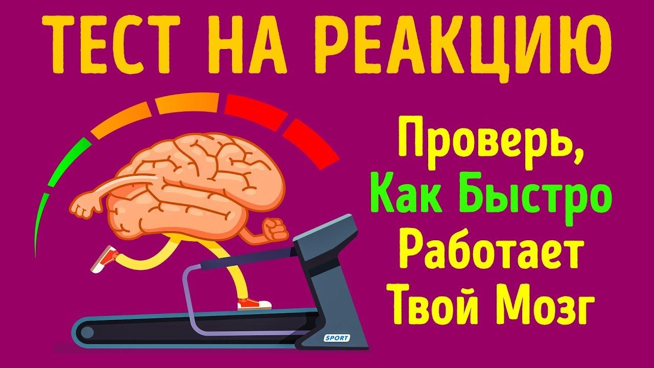 Тест на Скорость Реакции, Или Как Быстро Работает Ваш Мозг