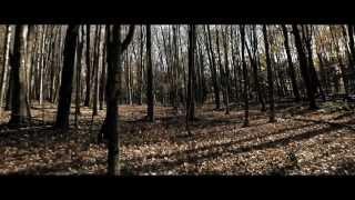 Triptyque (Pedro Pires et Robert Lepage) - Bande annonce
