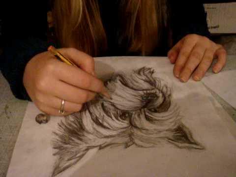 crtanje olovkom - pencil drawing - AteljeAz - YouTube