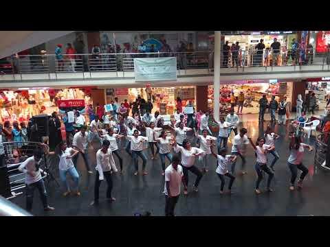 Bio Diversity flash mob | |At City central banjara hills| |  colors of dance
