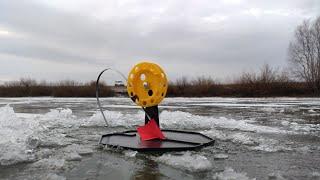 Первая рыбалка на Жерлицы по первому льду Такой Физухи давно не было Зимняя рыбалка