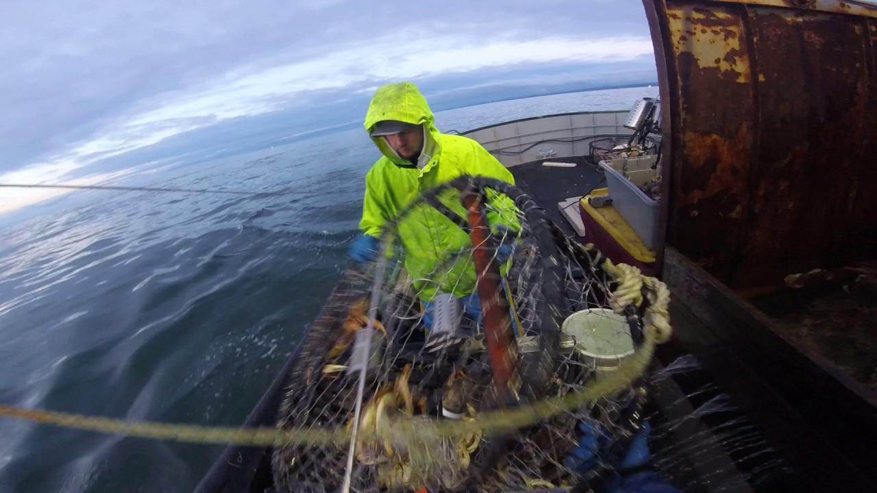 2017 oregon crabbing f v irish miss youtube for Oregon fishing license cost 2017