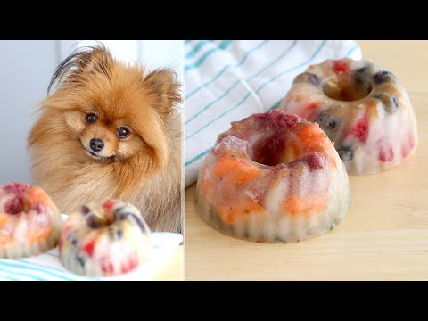 Homemade FROZEN Dog Treats Recipe! Summer Treats To Cool Off Your Puppy!