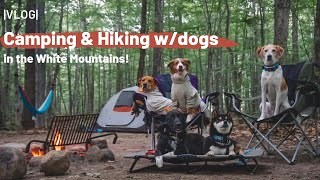 Camping & Hiking w/Dogs in the White Mountains |VLOG