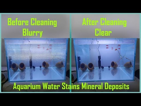 How To Remove Aquarium Hard Water Stains Or Mineral Deposits