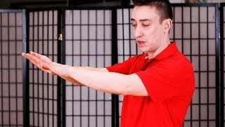 How to Do Jat Sau aka Shock Hand | Wing Chun