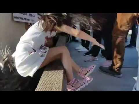 El dramático momento en que un león marino atacó a una niña