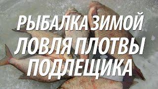 ЛОВЛЯ ПОДЛЕЩИКА, ПЛОТВЫ ЗИМОЙ СО ЛЬДА. РЫБАЛКА В СМОЛЕНСКОЙ ОБЛАСТИ(Ловля плотвы и подлещика со льда зимой. Рыбалка проходила на Вазузском водохранилище в Смоленской области...., 2015-09-24T15:14:00.000Z)