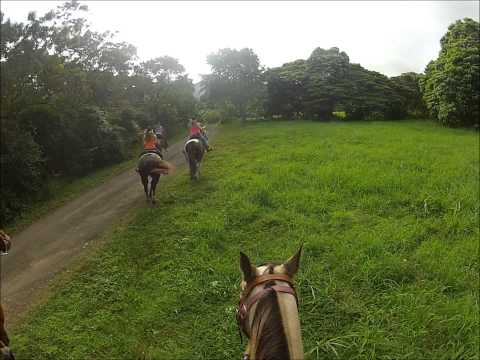 EXTREME horseback riding fun in HAWAII!!! (Ride It Like You Stole It)