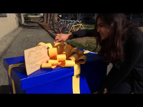 Dora Gift Box