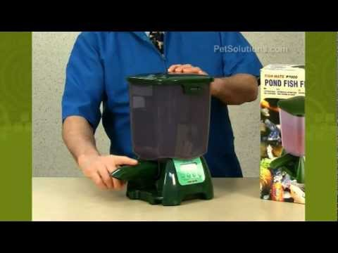 PetSolutions: Fish Mate Automatic Pond Feeder