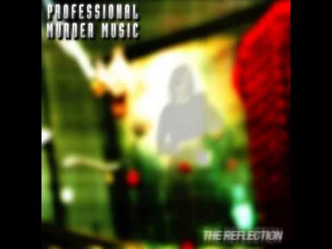 PROFESSIONAL MURDER MUSIC - The Reflection