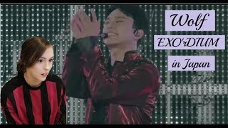 EXO - Wolf The EXO'rDIUM IN JAPAN - Reaction