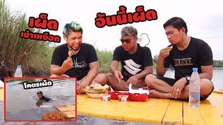 กินไก่-kfcหม่าล่า-บนเกาะส่วนตัวกลางแม่น้ำปิง-classic-nu