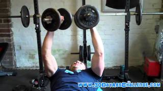 Basic Chest Training Tips (part 2) - Building Muscles For Abs